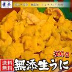 うに 雲丹  冷凍生うに 無添加 300g(100g×3P)ミョウバン不使用 ウニ 送料無料 安心・安全 うに丼6杯分 寿司 北海丼