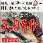 【送料無料】鮮魚一筋30年の魚屋が目利きした魚介を取り寄せ!おすすめセットプラン5,980円(税別)