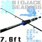 海専用ルアーロッド/BIGJACK76F 7.6FT ライトシーバス/エギング/メバリング/ロックフィッシュ等に/ソルトルアー竿