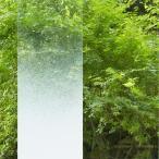 Yahoo!うさぎ屋ガラスフィルム 窓 グラデーション 白 おしゃれ 【本日 5のつく日!エントリーで最大 ポイント15倍 以上】