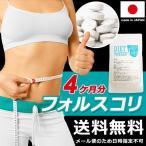 フォースコリー 国産 日本製 ダイエット サプリメント 安全 痩せ 効果 体脂肪 フォルスコリ 健康 4ヶ月 120日分 送料無料