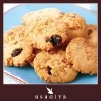 豆乳おからクッキー フルーツ グラノーラ 朝食 健康促進 ダイエット応援