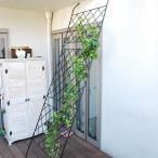 グリーンカーテン用フェンス アイアン グリーンカーテン 枠 柵 仕切り 目隠し ゴーヤ 薔薇 バラ 朝顔 庭 ベランダ ガーデニング