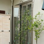 フェンス つる性植物 ベランダ 玄関 グリーンカーテン カーテンフェンス 屋外用 フレーム ガーデニング 枠 柵 目隠し アンティーク 園芸