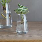 【年末セール!クーポン対象】 花器 200ml 小 ガラス おしゃれ 生け花 ガラス花器 ヒヤシンス 球根類 アボカド サボテン 花瓶