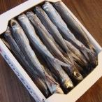 釣りうるめいわし丸干 (上乾燥干:1kg)★うるめ王国の天才職人が作る極上の釣りうるめ丸干し