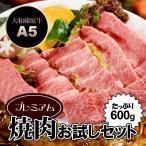 ショッピングお試しセット 牛肉 黒毛和牛 A5 大和榛原牛 プレミアム稀少部位のお試し焼肉セット 600g (とろイチボ200g・霜降りモモ肉200g・霜降りカルビ200g)   送料無料