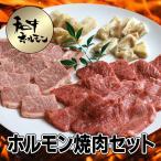 牛肉 黒毛和牛 A5 大和榛原牛 ホルモン焼肉セット 600g (牛たん:100g・ミノサンド:100g・てっちゃん:100g・カルビ:150g・牛バラ:150g) 送料無料