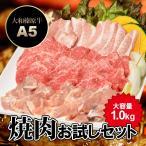 ショッピングお試しセット 牛肉 黒毛和牛 A5 大和榛原牛 焼肉お試しセット 1.0kg (大和榛原牛カルビ + 銘柄鶏 + 豚トロ + 粗挽きウィンナーソーセージ) 送料無料