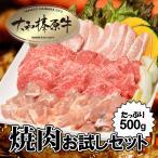 ショッピングお試しセット 【45%OFFセール】 焼肉 お試しセット (大和榛原牛A5カルビ:200g 大和美豚の豚とろ:150g 銘柄鶏モモ肉:150g) 送料無料