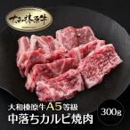 牛肉 黒毛和牛 大和榛原牛 A5 中落ちカルビ 焼肉用 お試し 300g