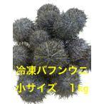 釣り つり 釣り餌 冷凍餌 冷凍バフンウニ 石鯛 イシダイ 小サイズ 1kg