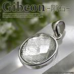 ギベオン ペンダントトップ オーバル 天然石 パワーストーン ギベオン隕石...