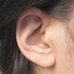 ニコン・エシロール 耳穴型デジタル補聴器(音量リモコン付き) 小型 目立たない  集音器  難聴 NIKON
