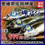 愛媛 ( アジ ) 天然一本釣り 約350g 3匹 浜から直送 送料無料 宇和海の幸問屋