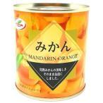 天長食品 みかん缶5号 312g×24個セット /みかん缶詰 (毎)