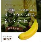 神バナナ 皮ごと食べられる国産無農薬バナナ Sサイズ 6本セット