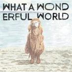 What A Wonderful World / 堀込泰行 (CD)