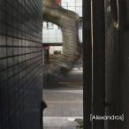 I Wanna Go To Hawaii. / [Alexandros] (CD)