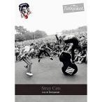 ライヴ アット ロックパラスト 1981 1983  DVD