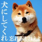 犬にしてくれ(スペシャルプライス盤) / 忘れらんねえよ (CD)