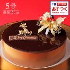 チョコレートケーキ ショコラ・スペシャリテ 5号 クリスマスオーナメント付
