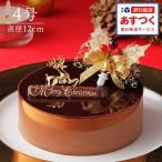 チョコレートケーキ ショコラ・スペシャリテ 4号 クリスマスオーナメント付