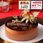 チョコレートケーキ ショコラ・スペシャリテ 4号 送料込 クリスマスオーナメント付