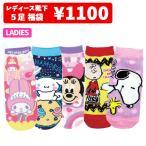 Sneaker Socks - キャラクター 靴下 5足 セット 福袋 ディズニー アメキャラ サンリオ キャラ グッズ