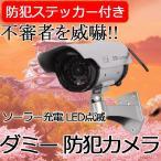 LED常時点滅 防犯 ソーラーパネル搭載ダミーカメラ[送料無料(一部地域を除く)]