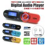 FMラジオ搭載MP3/WMAオーディオプレーヤー DT-SP17BK ブラック(microSDHC対応/クリップ付) _