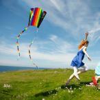 凧 凧揚げ カイト 凧揚げ 凧上げ タコ揚げ キッズ 子供 骨なしカイト 凧 おもちゃ 玩具 レジャー ピクニック 公園 キャンプ スポーツ 外遊び