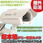 ダミー防犯カメラ 監視カメラ 防犯 ダミーカメラ ソーラー LED点滅 屋外