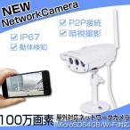 防犯カメラ IPカメラ ネットワークカメラ 屋外防水 防犯カメラ 100万画素 赤外線暗視 SDカード録画 VStarcam C7816WIP