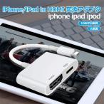 iPhone HDMI �Ѵ������ץ� iPhone 11 Pro X XR XS MAX 8 7 Plus HDMI �Ѵ������֥� ���� 1080P AV�����ץ� iPad �ƥ�� ��³ �����֥�