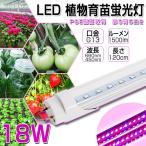 LED植物育苗 18w形 直管 全光束1200lm 120cm G13 t8 グロー式工事不要 植物育成ライト 水耕栽培植物育成パネル