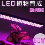 LED植物育成 植物育成ライト 60W 112LED 植物育成パネル 水耕栽培ランプ LEDパネル LEDライト園芸 プラントライト