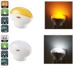 LEDナイトライト LED常夜灯 足元灯 ミニ スイッチ式  寝室や廊下 コンセント差込 室内用 寝室や廊下、階段などの補助灯に使えます 白色/電球色