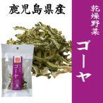 ゴーヤスライス 10g 乾燥野菜 鹿児島県産ゴーヤ使用 干し野菜 薩摩の恵