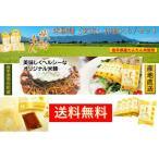 岩手県雫石産 米粉麺 玄米麺12食入り/ セット 送料無料