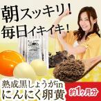 にんにく卵黄 熟成黒しょうがinにんにく卵黄 62粒 約1か月分  送料無料