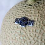 静岡クラウンメロン シングル BOX(1個) マスクメロン アールスメロン 果物の最高峰