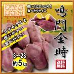 鳴門金時 食べきり Sサイズ 徳島県産 なると金時 金時芋 さつまいも 5kg 送料無料
