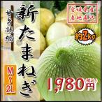新たまねぎ 新玉 野菜 箱買い たまねぎ タマネギ 玉ねぎ 玉葱 愛媛県産 2kg 送料無料