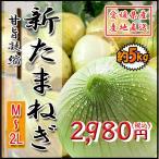 新たまねぎ 新玉 野菜 箱買い たまねぎ タマネギ 玉ねぎ 玉葱 愛媛県産 5kg 送料無料