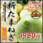 新たまねぎ 新玉 野菜 箱買い たまねぎ タマネギ 玉ねぎ 玉葱 愛媛県産 10kg 送料無料