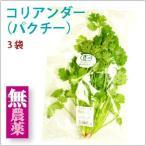 コリアンダー(パクチー) 3袋 静岡県産無農薬栽培。 送料無料
