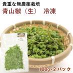 青山椒 (生)和歌山県産無農薬栽培 100g 2パック 送料無料