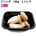 静岡県産 エリンギ  4パック 送料無料
