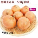 有機玉ねぎ 500g 北海道産無農薬栽培  送料別 ポイント消化 食品